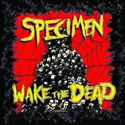 specimen wake the dead batcave
